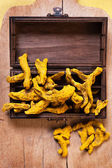 Rhizome of turmeric — Stock Photo