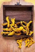 Rhizome of turmeric — Stock Photo