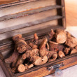 Dried galangal root — Stock Photo