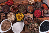 Large set of spices, seasonings and salt — Stock Photo
