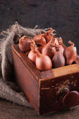 Shallots in an old wooden box — Stock Photo