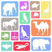 животные — Стоковое фото