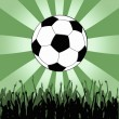 Stock Photo: Soccer wallpaper