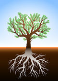 Tree in earth and it's roots — Stock Vector