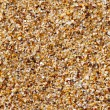 Sea sand texture, seamless — Stock Photo
