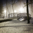 Park bridge in winter — Stock Photo