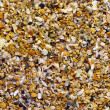 Stock Photo: Sea sand texture, seamless