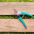 Pruner on wood board — Stock Photo