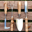 Stock Photo: Gardening tools on wood board