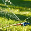 Irrigation of green grass — 图库照片