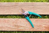 Pruner on wood board — Stock Photo
