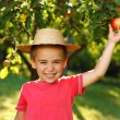 Smiling boy with apple — Stock Photo #30903489
