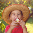 Boy eating apple in orchard — Stock Photo #30903495