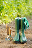 Gardening tools and equipment — Stock Photo