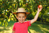 Smiling boy with apple — Stock Photo