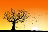 Autumn tree silhouette — Stock Vector