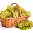 Stock Photo: White grape clusters in basket