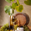 White wine with cheese and blue grape snack — Stock Photo #34174593
