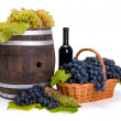 White and blue grape in basket with barrel — Stock Photo #34174655