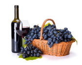 Red wine and ripe blue grape in basket — Stock Photo