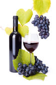 Bottle and glass of red wine whit grape clusters — Foto Stock