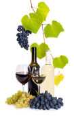 Bottle and glass of white and red wine — Stock Photo