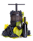 Manual grape pressing utensil with red wine — Stock Photo
