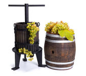 Grape pressing utensil and barrel with white grapes — Stock Photo