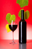 Bottle and glass of red wine with grape leaves — Stock Photo