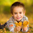 Happy little boy picking leaves — Stok fotoğraf