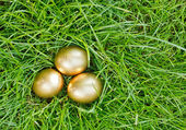 Golden easter eggs on the green grass — Stock Photo