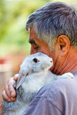Man with gray rabbit — Stock Photo