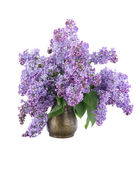 Bouquet of lilac in a copper jug, isolated on a white background — Stock Photo