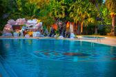 Resort — Stock Photo
