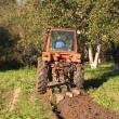 Farmer plowing — Stock Photo #14474073