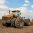 Tractor processes field — Stock Photo