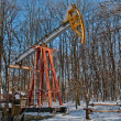 Oil pump in winter — Stock Photo