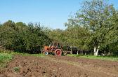 Plow in field — Stock Photo