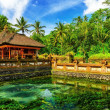 Tirta Empul Temple - Stock Photo