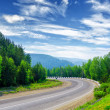 Mountain road — Stock Photo #12596586
