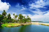 Samui — Stock Photo