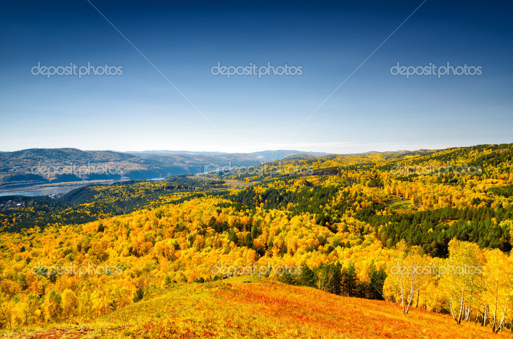 Beautiful autumn landscape. Fall season. — Stock Photo #13473578