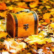 Autumn — Stock Photo #13498704