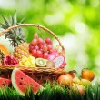 Basket of tropical fruits on green grass — Stock Photo #18469629