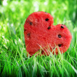 Stock Photo: Watermelon heart on green grass. Valentine concept