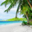 Green tree on white sand beach — Stock Photo #18600551