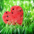 Watermelon heart on green grass. Valentine concept — Stockfoto