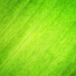 Texture of green leaf. Nature background. — Stock Photo