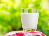 Glass of milk on nature background — Stock Photo