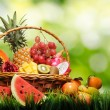Basket of tropical fruits on green grass — Stock Photo #21068561